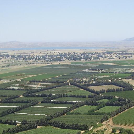 panorama of a plain in Batanea