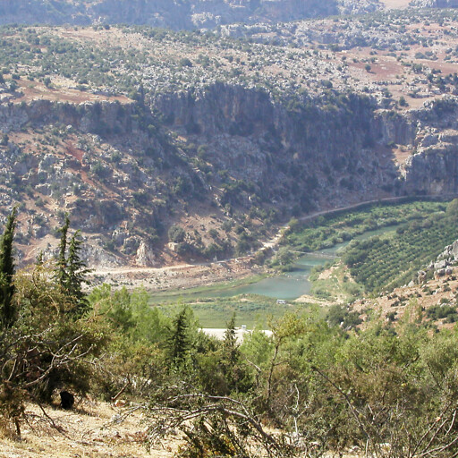 panorama of the Orontes River in Syria 2