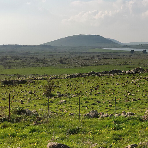 panorama of a plain in Bashan