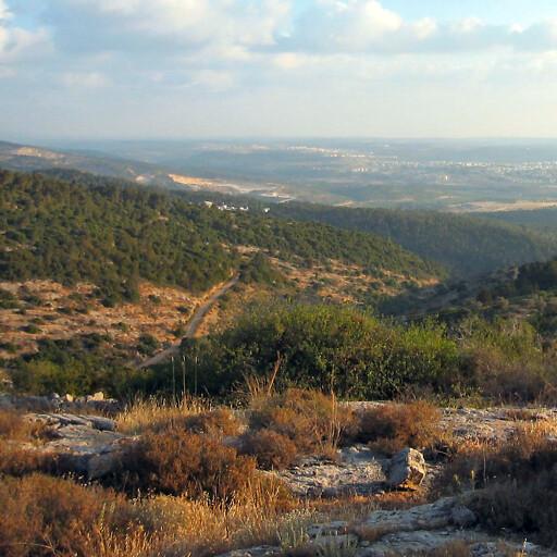 panorama of hills in Judea 2