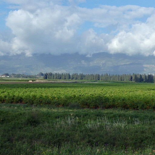 panorama of a plain in Maacah
