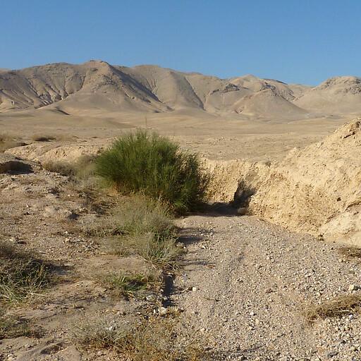 panorama of Al Buqay'ah