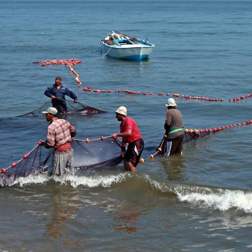 workers at Lake Manzala