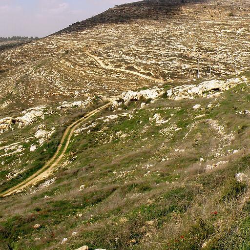 ruins at Khirbet Seilun