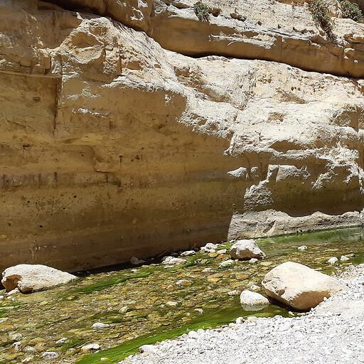 closeup of Wadi el Arrub