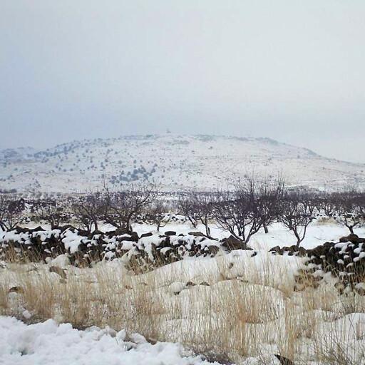 panorama of Jebel Druze