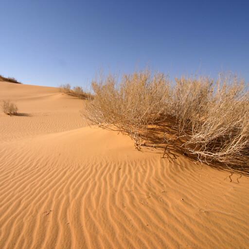 panorama of a desert in Massa