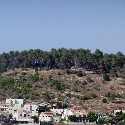 cityscape including Khirbet Deir Abu Kabus at the summit