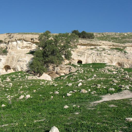 panorama of Tell es Safi