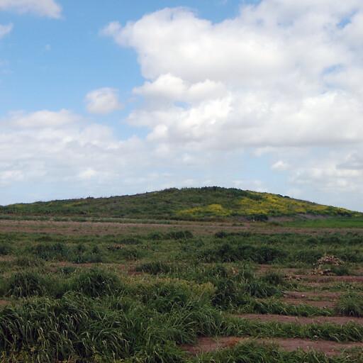 panorama of Tel Far