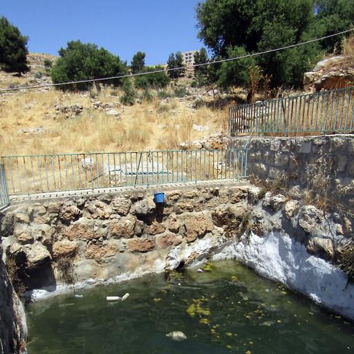 pool at Khirbet ed Dilb