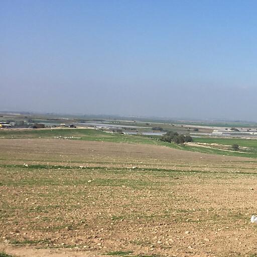 panorama looking north including Umm el Umdan