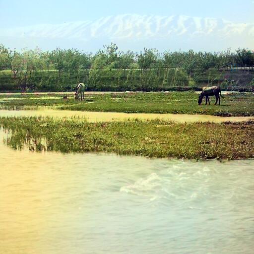 historical closeup of the Barbar River