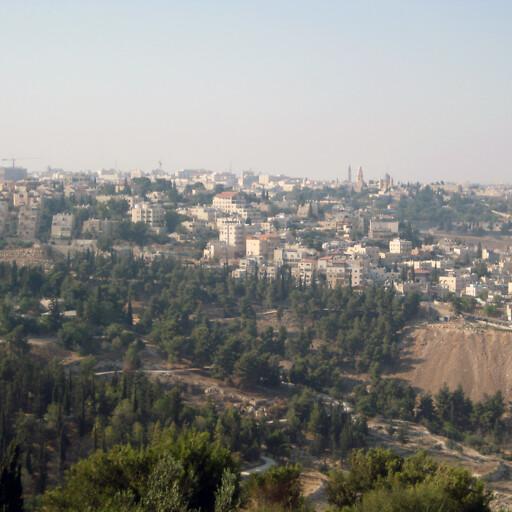 cityscape of Abu Tor