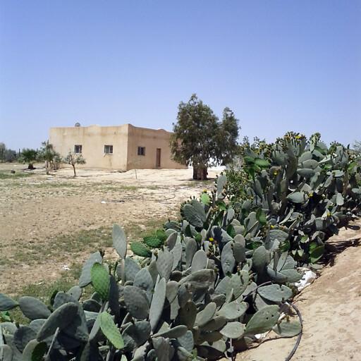 building at Umm Batin
