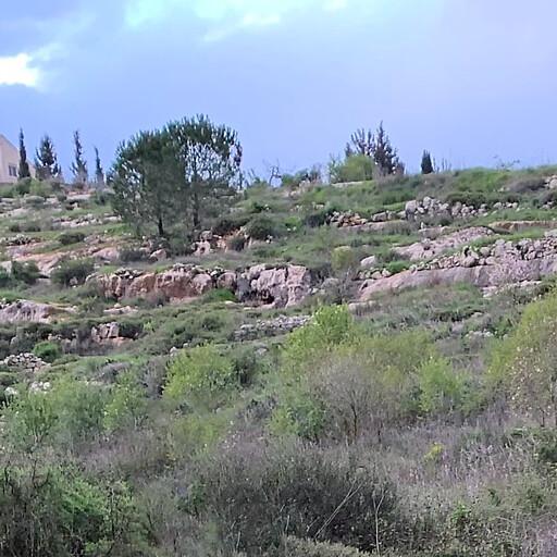 panorama of Khirbet Beit Mizza