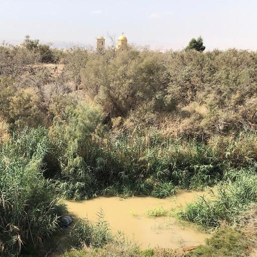 closeup of the Jordan River somewhat by the Dead Sea