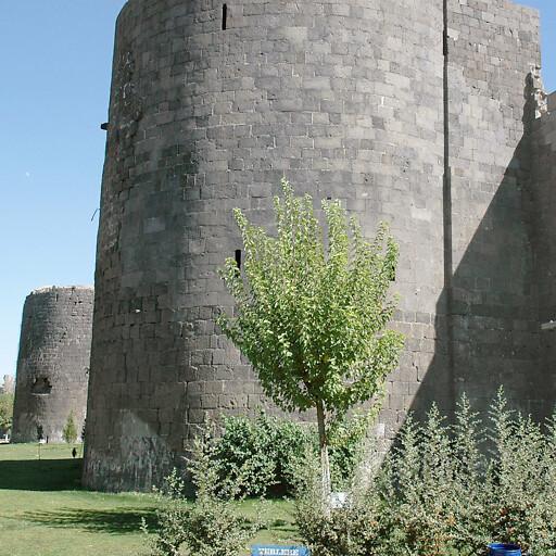 walls at Alsi