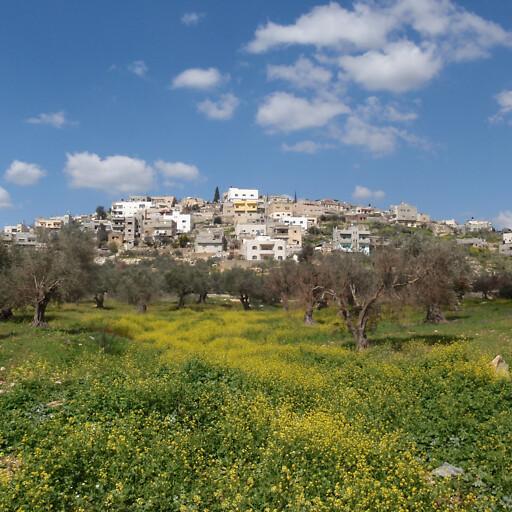 cityscape of Awarta
