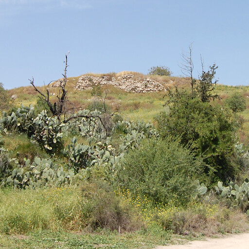 panorama of Yalo