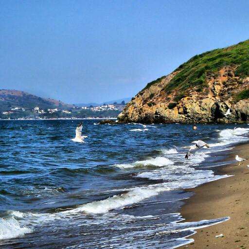 panorama of a beach in Mysia