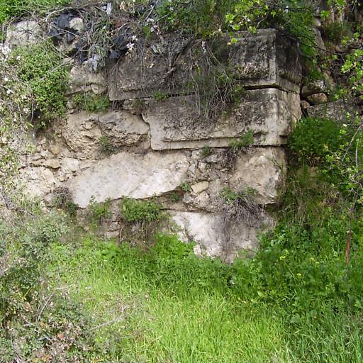 ruins at Qalunya