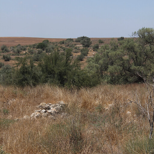 panorama of hills in the region between Lachish and Gath