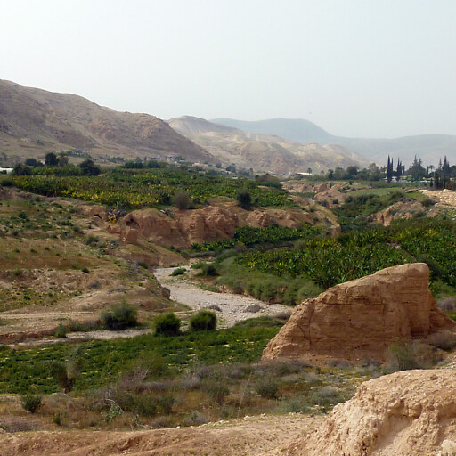 closeup of Wadi Nu'eima
