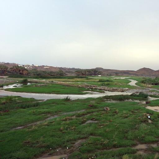 closeup of Wadi Baysh
