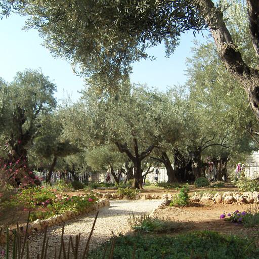 park at Gethsemane