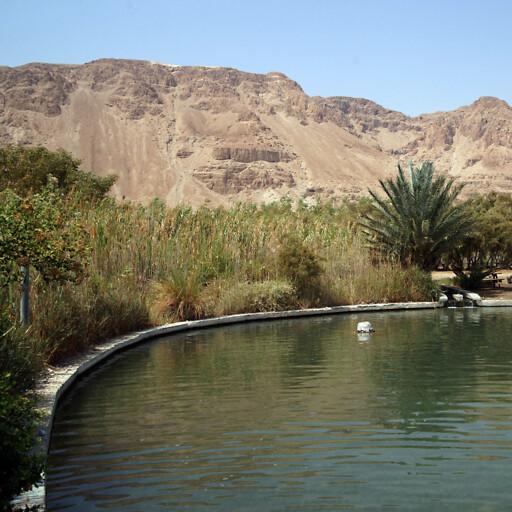 panorama of Ain Feshkah