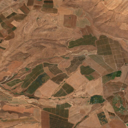 satellite view of the region around Olam