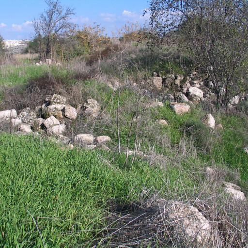 recent ruins at Salbit