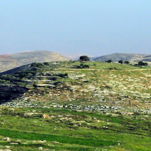 panorama of Tell el Askar