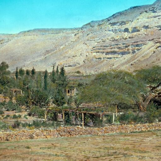 panorama of Khirbet el Qudeirat