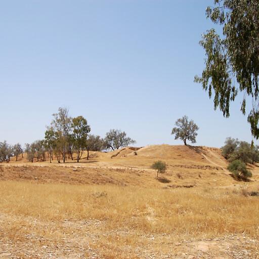 panorama of Tel Haror