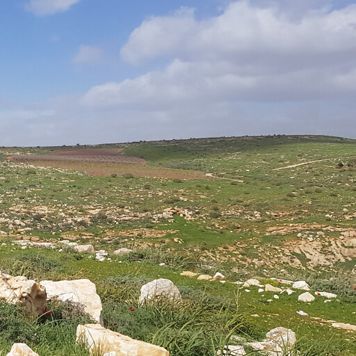 panorama of a region on the plateau east of Rammun