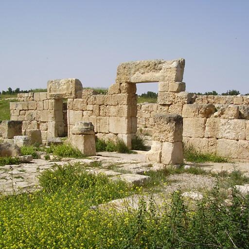 ruins at Horbat Anim