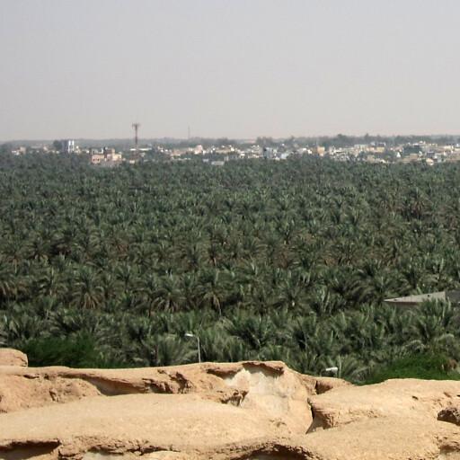 panorama of Al Ahsa
