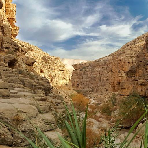 canyon of Wadi Qelt