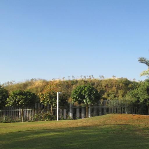 panorama of Tel Zeton