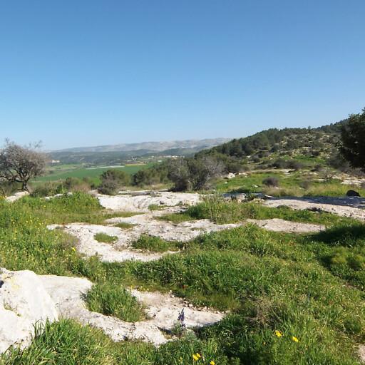 ruins at Tel Socho