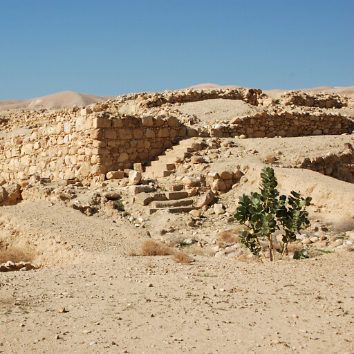 ruins at Tell el Alayiq