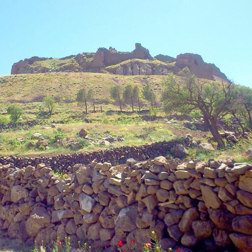 panorama of Salkhad