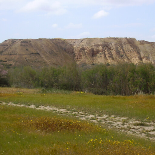 panorama of Tel Sharuhen