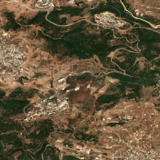 satellite view of the region around Tel Rosh