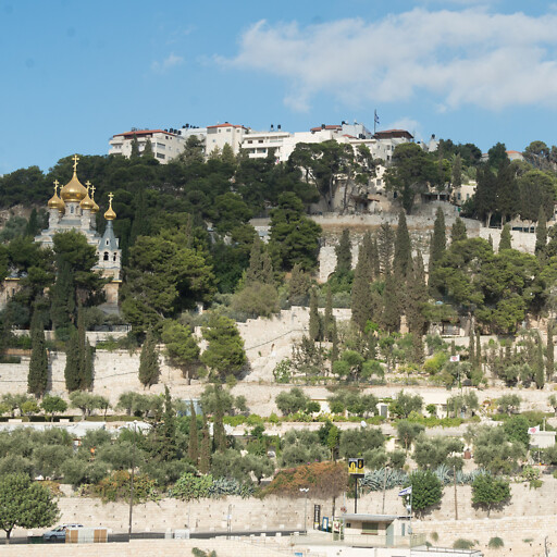 panorama of the Mount of Olives
