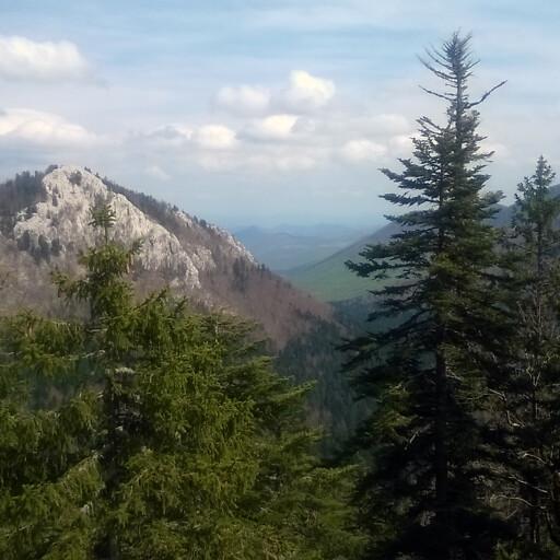 panorama of a natural area in Dalmatia