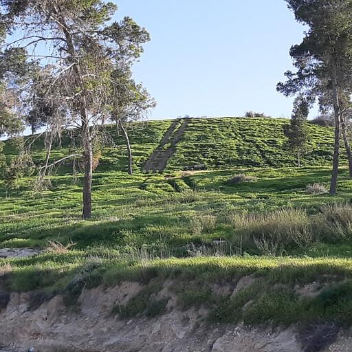 panorama of Tel Halif