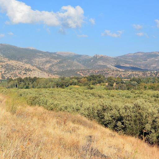 panorama of the upper Huleh Valley